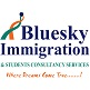 Bluesky immigration and students consultancy