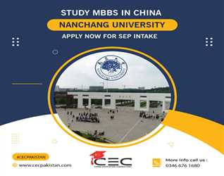 Study Bachelors in China